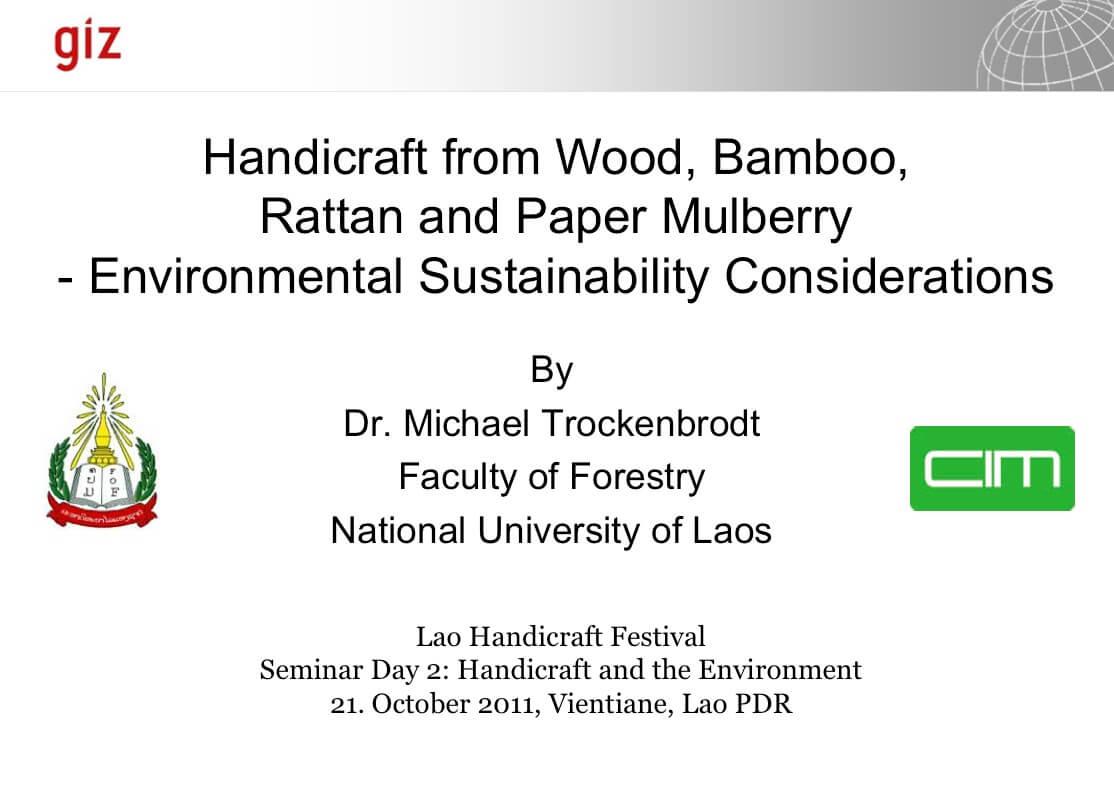 Handicraft and Environment presentation